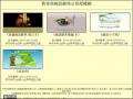 教育部國語辭典公眾授權網